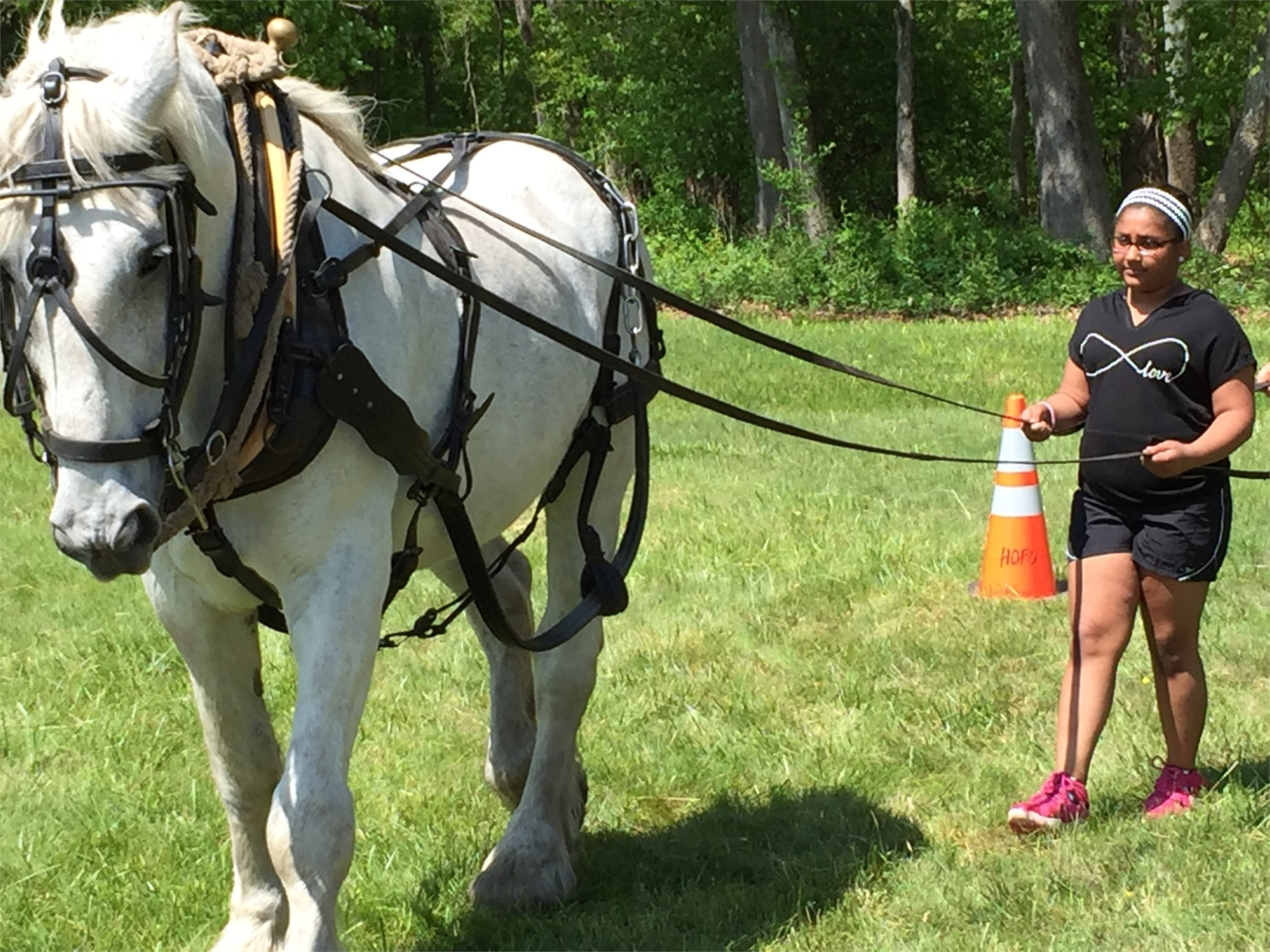 Learning to walk a draft horse at Hopewell Furnace!